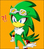Jet the Hedgehog by Captain-Tot