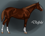 Delphi as a Yearling by Geronimo24