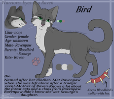 Bird- reference sheet by serenitywhitewolf