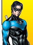 Nightwing ID by sean-izaakse