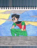 teen titans robin by amanda994
