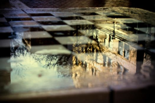Checkerboard Reflection by logicaldelusions