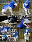 Tiger of the Wind - For Sale by guardiansandi