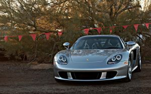 Carrera GT at Russo and Steele by DryHeatPanzer