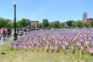 Memorial Day, Sea Of Flags 4 by Miss-Tbones