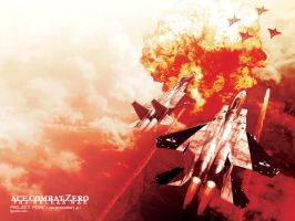 Ace Combat Zero, Wallpaper by Silver87553