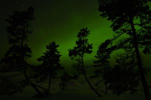 Northen Lights by Cussypat