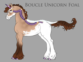 B130 - Boucle Foal Design by Shelby-3000