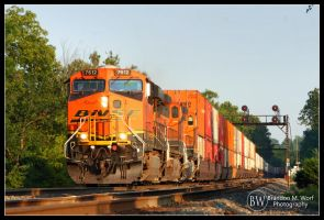 BNSF Intermodal Express by factorone33