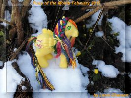 Pony of the Month February 2015 by LarraChersan