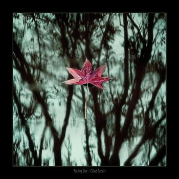 Falling Star by gilad