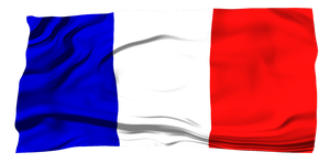 Flags of the World: France by MrAngryDog