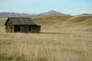 A Rangy Old Homestead by FroglovinPhotogirl