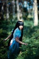 Marchen - Snow White - 05 by shiroang