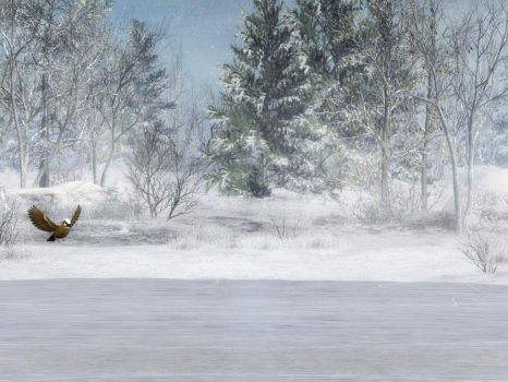 Winter Background 3 by BlackStock