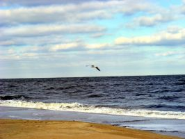 Virginia Beach 2 by PridesCrossing