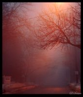 Winter Fog, City Streets by Summers-Solstice