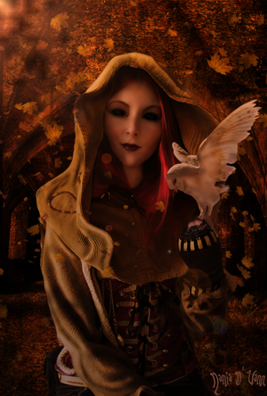 Autumn has come by Nania-D-Vann