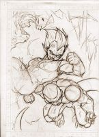 Budokai_sketched by VanOxymore
