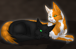 Boom Clap - Fallen Leaves X Hollyleaf SP by RiverBelle