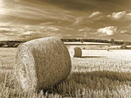Hay Field - Great Staughton by davepphotographer