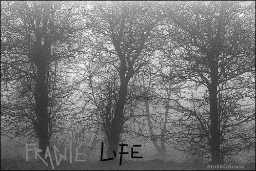 fragile life by SpikedCandy