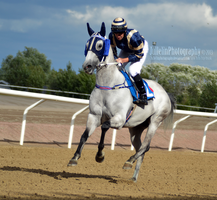 Horse Racing 58 by JullelinPhotography