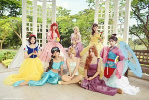 Disney Princesses Gathering by Razhensia