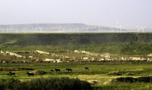 Windmills and horses by scott-451