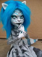 Monster HIgh Cheshire Custom by AdeCiroDesigns
