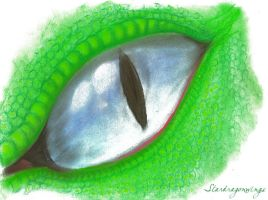 Eye of The Reptile by Stardragonwings
