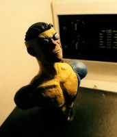 Invincible Bust by NationalGeo
