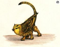 Golden Songgryphon by songgryphon