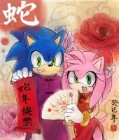 Sonamy- HAPPY chinese new year! by DreamingClover