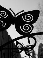 Butterflies by EricaOscura