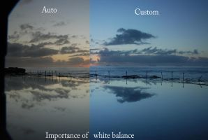 Importance of white balance by The-name1ess