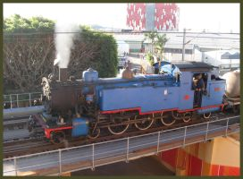Ekka Steam service by RedtailFox