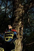 Fire Emblem - Hector by fal-uh-see