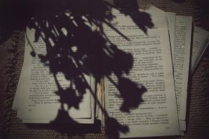 Chaotic thinks and books by Straaciaatellaa