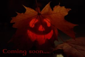 It's coming by Winstein