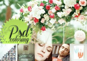 PSD coloring HD full colors + 34 by alma-mora