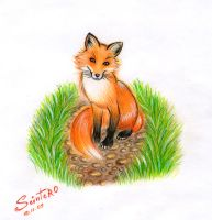 Fox by Alexsiel