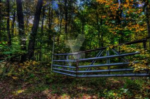Fall Fence by Bramsey89