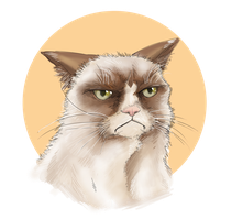 Grumpy Cat by uger