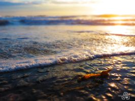 WatersEdge by DylanStricker