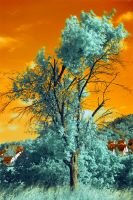 IR Tree 3 by PEACEBRAKER