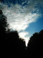Sky Blue and Clouds by Ionday