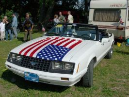 mustang with flag by Mate397