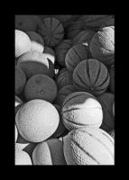 Funky Melons by Black-White-Club