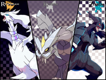 Unova Dragons Wallpaper by Xous54